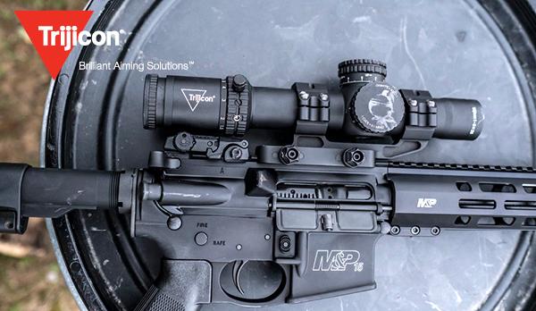 riflescope on police carbine